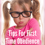 FREE WEBINAR  – 10 Tips For First Time Obedience