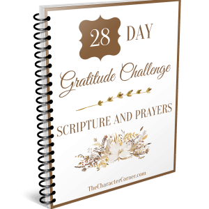 28 Day gratitude challenge journal