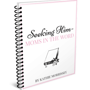 A video workbook course to guide moms in seeking God and His Word regularly.