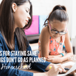 Staying Sane When Things Don't Go As Planned In Your Homeschool