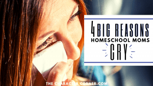 A mother shares 4 Big Reasons Homeschool Moms Cry