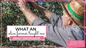 Olive Farmer picking olives text reads:What an Olive Farmer Taught Me About Discipleship