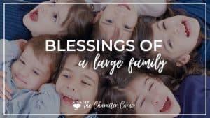 children from a large family playing text on image reads blessings of a large family
